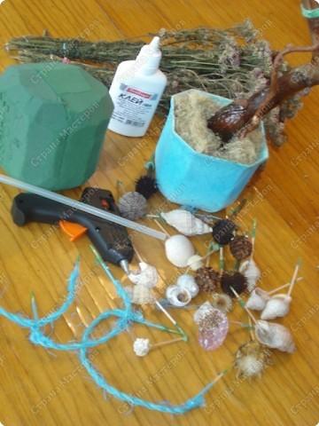 Мастер-класс: МК Морского дерева Ракушки Дебют. Фото 2