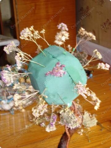 Мастер-класс: МК Морского дерева Ракушки Дебют. Фото 4