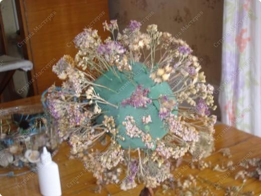 Мастер-класс: МК Морского дерева Ракушки Дебют. Фото 5