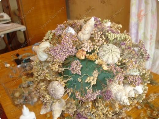 Мастер-класс: МК Морского дерева Ракушки Дебют. Фото 10