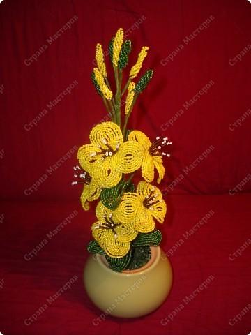 Флористика Бисероплетение: Просто цветы... Бисер