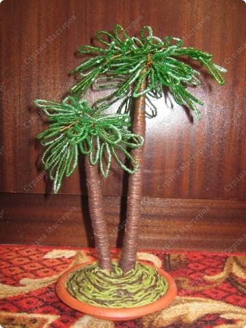 пальма из бисера схема плетения