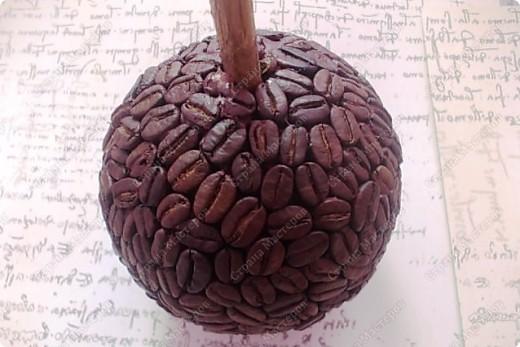Кофейный топиарий пошаговые фото