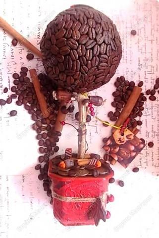 Мастер-класс Лепка: Кофейный топиарий - подробный мастер-класс (много фото) Семена. Фото 1