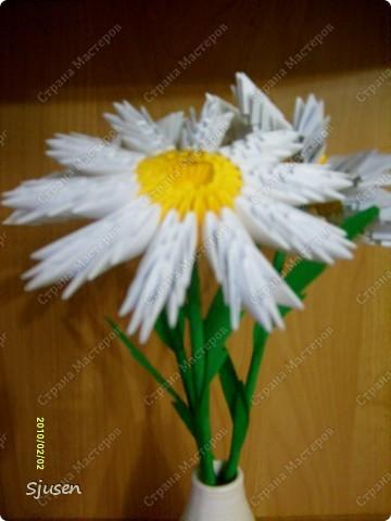 Мастер-класс Оригами модульное: Ромашки - МК Бумага 8 марта, День рождения, День учителя. Фото 1