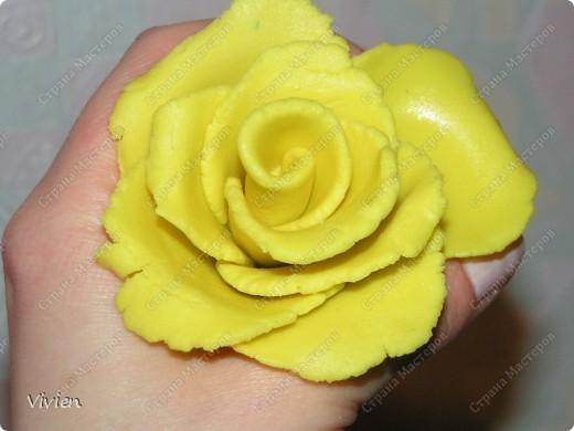Кулинария Лепка: Пробная розочка из мастики Тесто для выпечки День рождения. Фото 1