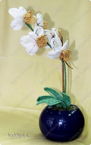 Бисероплетение: Орхидея.