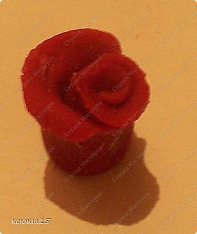 Мастер-класс Лепка: МК розы из соленого теста Тесто соленое Дебют. Фото 8