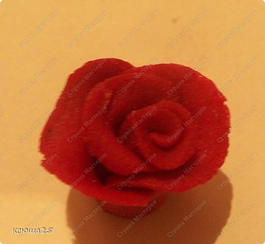 Мастер-класс Лепка: МК розы из соленого теста Тесто соленое Дебют. Фото 12