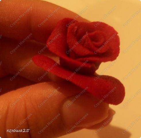 Мастер-класс Лепка: МК розы из соленого теста Тесто соленое Дебют. Фото 13