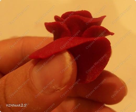 Мастер-класс Лепка: МК розы из соленого теста Тесто соленое Дебют. Фото 14