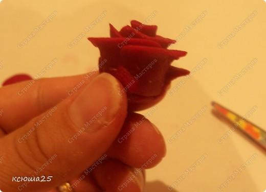 Мастер-класс Лепка: МК розы из соленого теста Тесто соленое Дебют. Фото 15
