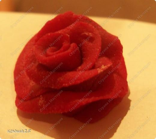 Мастер-класс Лепка: МК розы из соленого теста Тесто соленое Дебют. Фото 17