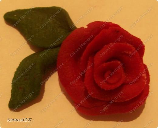 Мастер-класс Лепка: МК розы из соленого теста Тесто соленое Дебют. Фото 23