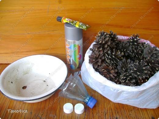 Мастер-класс,  Выпиливание, : Ёжик из шишек. МК Шишки . Фото 2