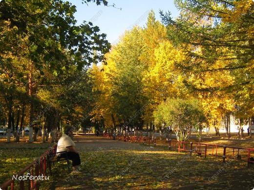 Аппликация: осенний пейзаж из листьев Листья.  Фото 2.