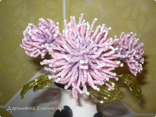 Поделка, изделие Бисероплетение: Цветы из бисера Бисер.  Фото 3.