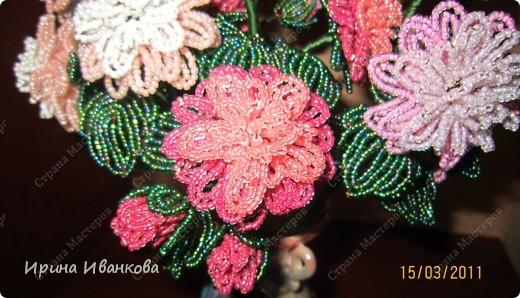 Мастер-класс Бисероплетение: Букет цветов Бисер.  Фото 2 ...
