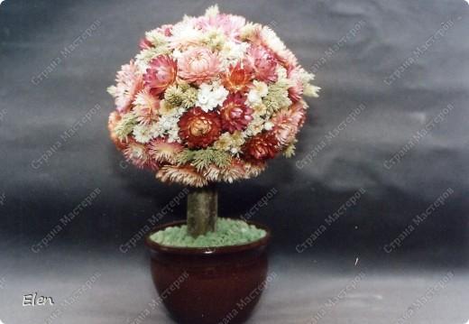 Поделки из сухоцветов