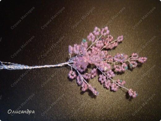 Master Class, Craft, gyöngyfűzés termék: Silver Sakura ...  MC ...  Gyöngyök, szálak, Wire.  Fotó 19