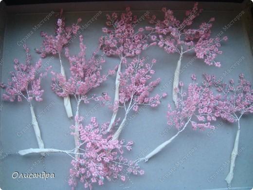 Master Class, Craft, gyöngyfűzés termék: Silver Sakura ...  MC ...  Gyöngyök, szálak, Wire.  21. kép
