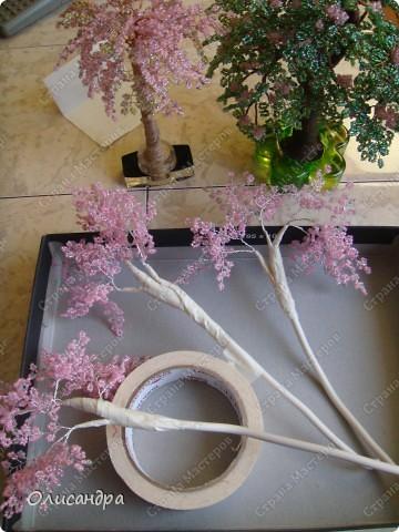 Master Class, Craft, gyöngyfűzés termék: Silver Sakura ...  MC ...  Gyöngyök, szálak, Wire.  24. kép