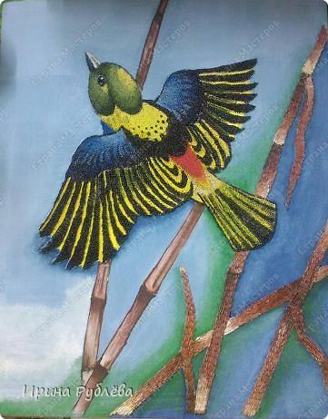 Картина, панно Аппликация: Зёрнышко к зёрнышку. Фотогалерея работ. Крупа, Материал природный. Фото 45