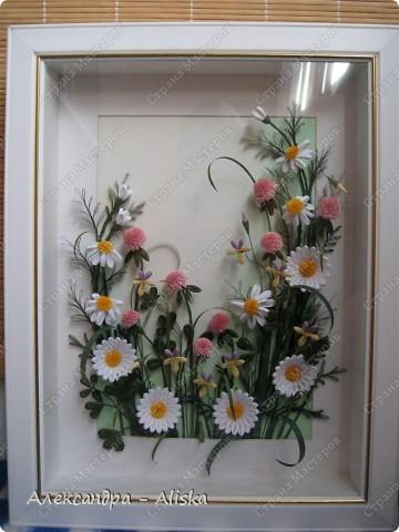 Картина, панно, рисунок Квиллинг: Луговые цветы Бумага День рождения. Фото 5