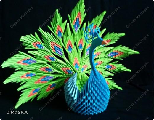 Схемы павлина модульное оригами