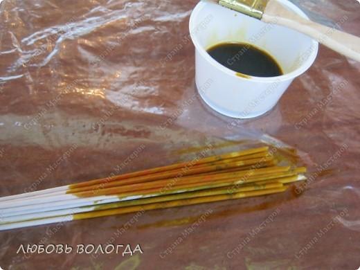 Для окраски нам понадобятся трубочки, морилка ВОДНАЯ, кисточки, плошки, в которые будем наливать краску, большая клеенка, на которой будем красить, тряпочка, протирать клеенку между разными цветами окраски.. Фото 3