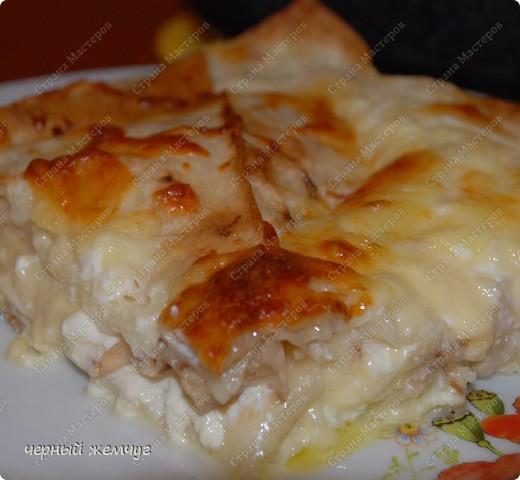 Кулинария, Мастер-класс Рецепт кулинарный: Запеченый лаваш с молоком и сыром Продукты пищевые. Фото 1