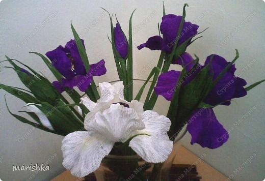 Цветы ирисы своими руками