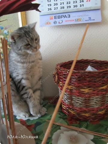 Мастер-класс Плетение: Спасибо Тане Павловне! Бумага газетная. Фото 5