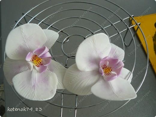 Мастер-класс Лепка: Сахарные орхидеи без вырубок Продукты пищевые. Фото 9