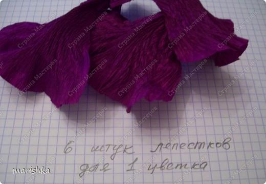 Мастер-класс, Свит-дизайн Бумагопластика: МК ирисы - часть1 Бумага гофрированная. Фото 13