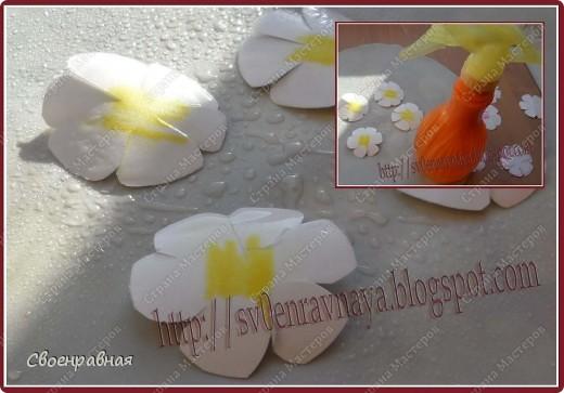 Мастер-класс Бумагопластика: Цветы из бумаги Бумага Свадьба. Фото 4