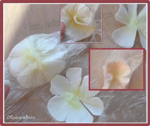Мастер-класс Бумагопластика: Цветы из бумаги Бумага Свадьба. Фото 9
