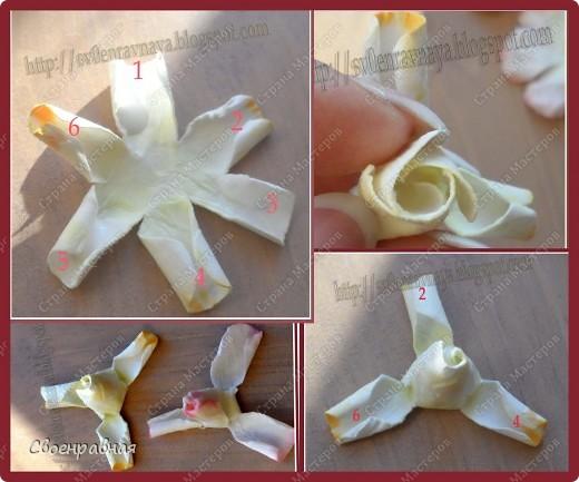 Мастер-класс Бумагопластика: Цветы из бумаги Бумага Свадьба. Фото 11