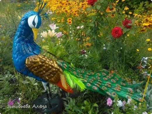 Как сделать птиц из пластиковых бутылок своими