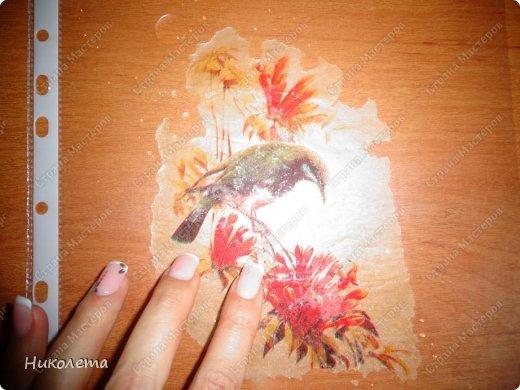 Декор предметов, Мастер-класс Декупаж: МК вазочка (ТЕРРА) Бутылки стеклянные, Краска, Материал природный, Салфетки. Фото 6