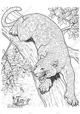 Картина, панно, рисунок Выжигание по дереву: Леопард Дерево  Отдых. Фото 2