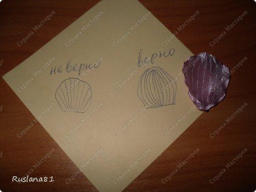 Просили мк орхидеи-выкладываю. фото 5