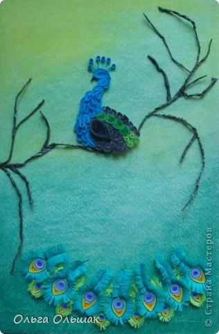 Картина, панно, Мастер-класс Квиллинг: Царская птица + mini МК. Бумага, Пастель, Бумажные полосы День рождения. Фото 12