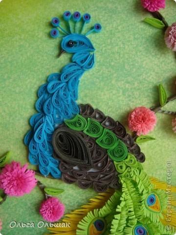 Картина, панно, Мастер-класс Квиллинг: Царская птица + mini МК. Бумага, Пастель, Бумажные полосы День рождения. Фото 3