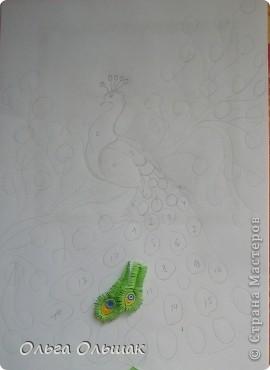 Картина, панно, Мастер-класс Квиллинг: Царская птица + mini МК. Бумага, Пастель, Бумажные полосы День рождения. Фото 15