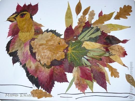 Мастер-класс, Флористика Аппликация: петух из осенних листьев Листья