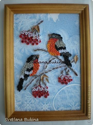 Картина, панно, рисунок Квиллинг: Снегири. часть1  Бумага Новый год. Фото 1