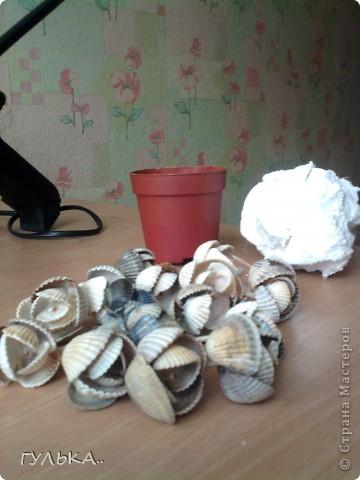 Мастер-класс,  : Это моя первая работа с ракушками. Собрала летом на берегу Каспийского моря..... Ракушки День матери, . Фото 4