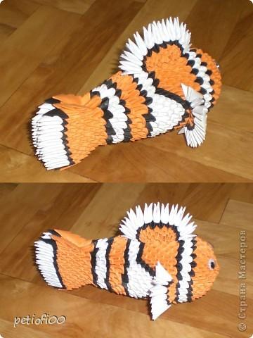 鱼的折叠步骤图片