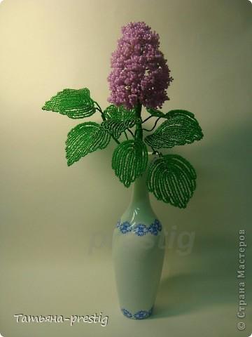 бисероплетение для самых самых начинающих цветы схемы